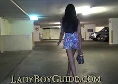 Lustful Fetching Lipped Lady-boy
